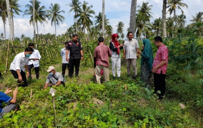 Wujudkan Smart Farming di Desa Cintamulya, Dosen IIB Darmajaya akan Terapkan IoT