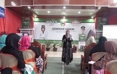 Dosen IIB Darmajaya Isi Seminar UMKM Pemkab Tanggamus